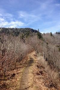 Appalachian Trail headed west starting ascent up Mount Kephart