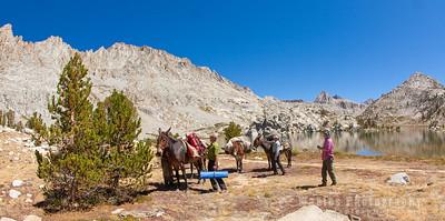 Unpacking the Mule Team