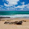 Beautiful Moloa`a Beach