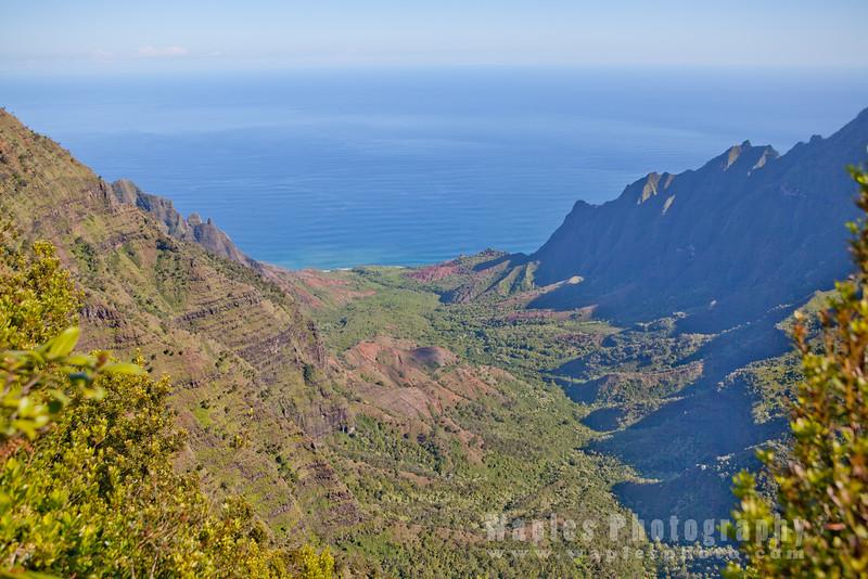 Kalalau Valley from Pu'u o Kila Lookout