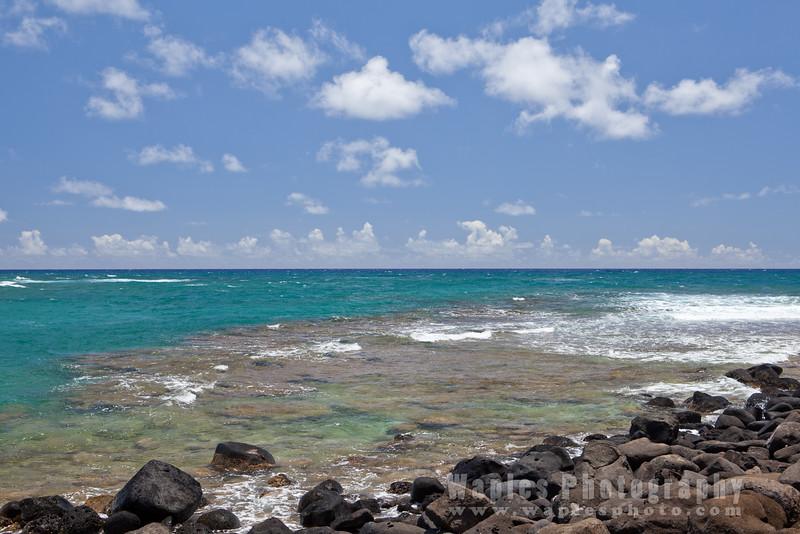 Papa'a Bay Reefs
