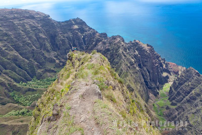Behold the Valleys! Nu'alolo (left) & Awa-'awapuhi (right)