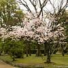 Hiro_16 04_0241