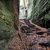 Cantwell Cliffs, Hocking Hills, Ohio - October 2009