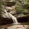 Cedar Falls Sepia