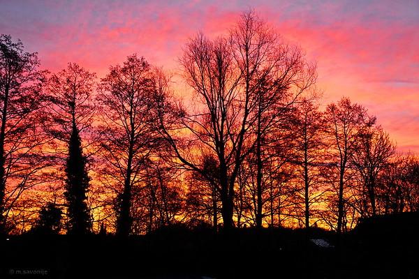 Sunrise January 6, 2015