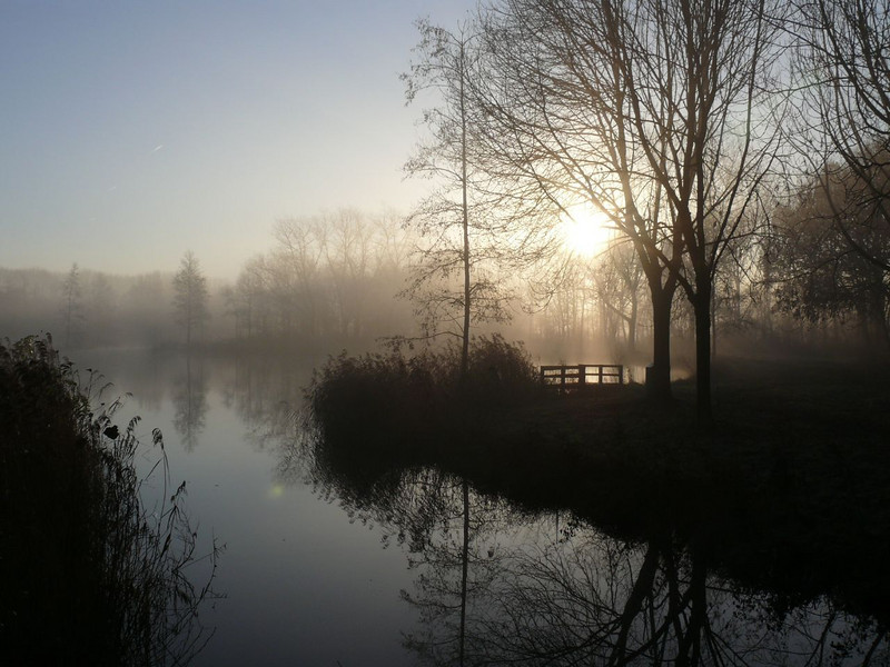 Mondaymorning <br /> Still foggy, the sun is trying to get through
