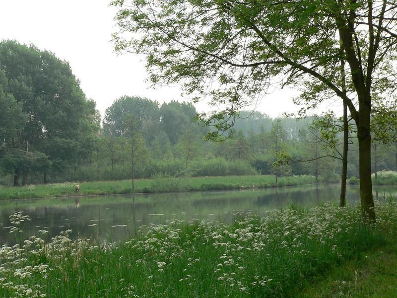 Visvijver <br /> Visvijver in De Lieskampen, de Bommelerwaard