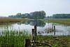 Brede sloot langs de Schouwendijk