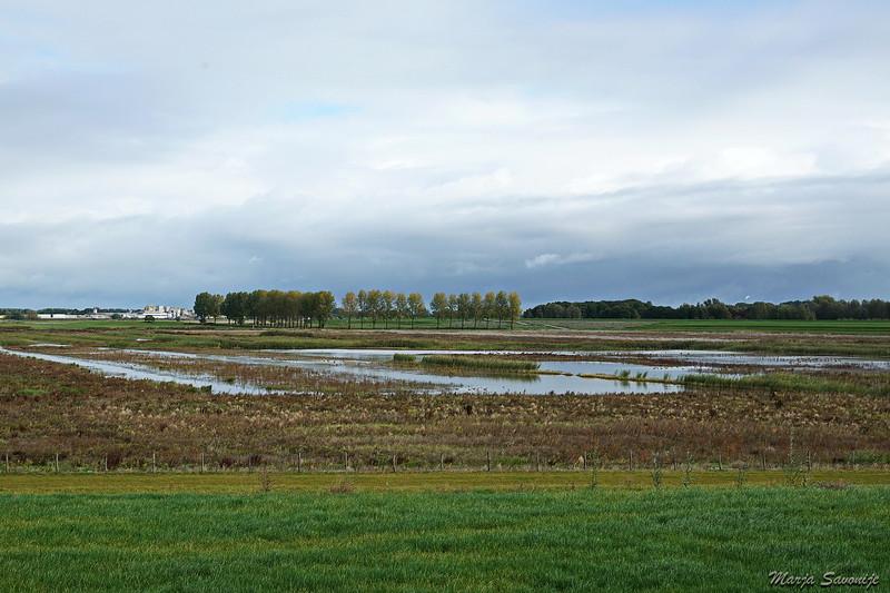 Hier mag de rivier overstromen, de Wakkere dijk beschermt het land