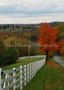 Winning photograph in the Holmes County Ohio Fall photo contest.