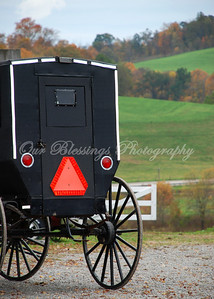 This Amish buggy was parked on a back road outside a bakery.
