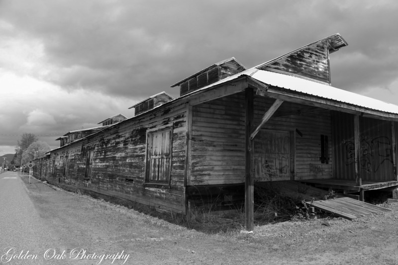 The old fruit packing plant..
