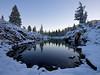 Pond, Hoover Wilderness