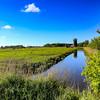 Horsey Windpump - Norfolk (May 2014)