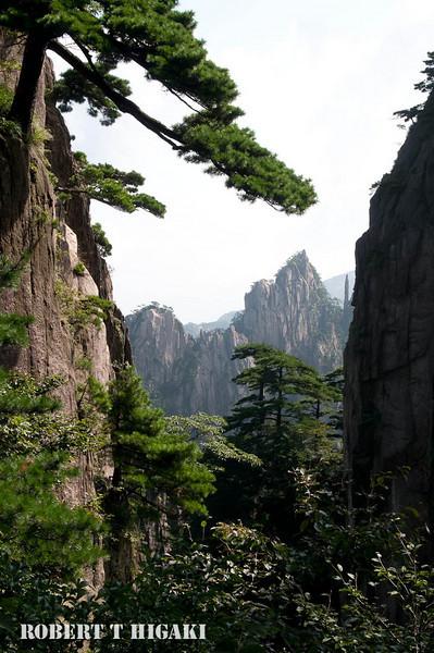 huangshan-15