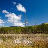 39  G Blue Skies Above Pond
