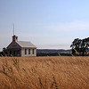 Schoolhouse, grasses and tree.  (M. Scadden)