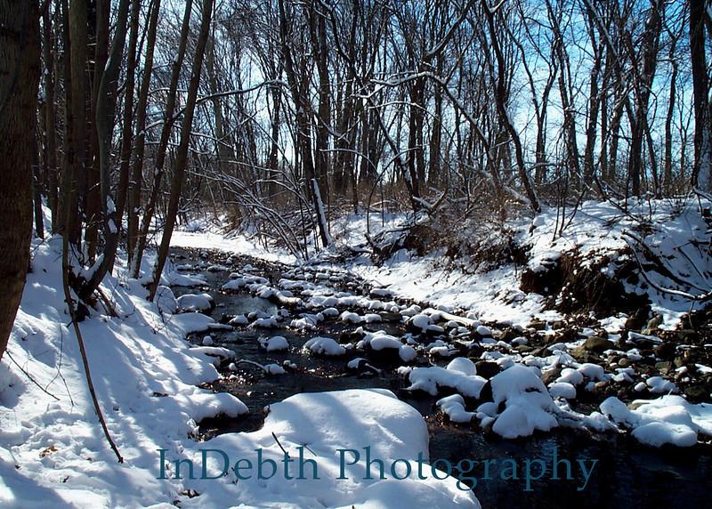 Intervale Garden Creek Winter