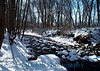 Intervale Garden Creek Winter