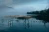 Lac, pres de Tadoussac