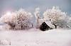 Winter landscape, Les Éboulements