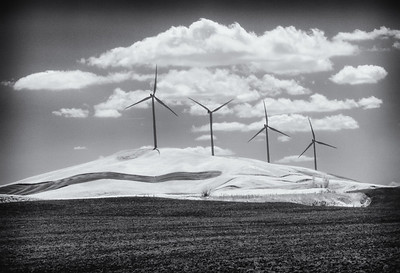IR Photography of the Palouse