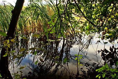 Storrs Lake Segment