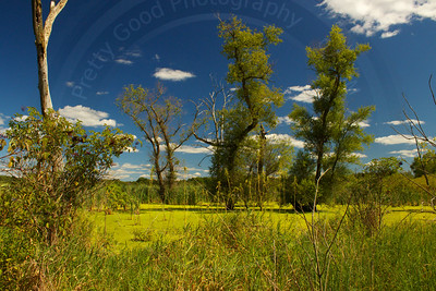 Southbound Storrs Lake Segment