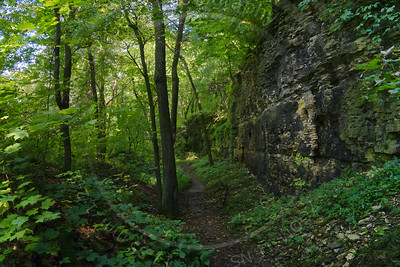 Sylvan Pathway