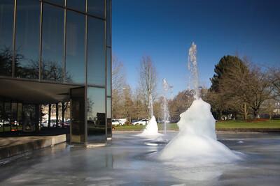 Oregon Freeze Dry, Inc.,  Dec. 10, 2009