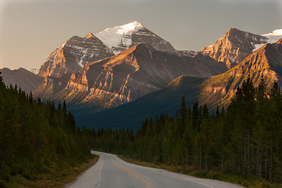 Early morning light on Mt. Temple, Icefields Parkway, Banff