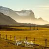 306  G Views Near Hofn, Iceland