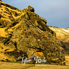 121  G Southern Iceland Home
