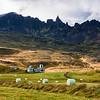 Farming, Iceland Style