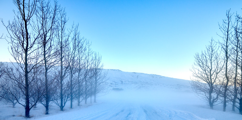 IcelandSelectsD85_1105