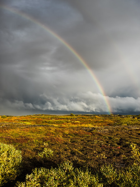 Thingvellir rainbow