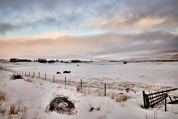 IcelandSelectsD85_1305