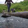 Crossing of the Glymur river/ Western territories