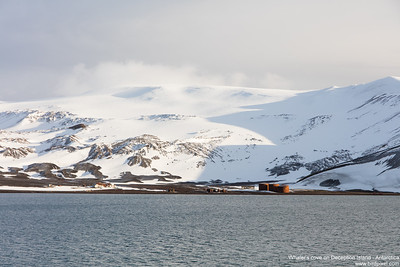 Whaler's cove on Deception Island - Antarctica