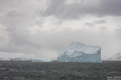 Iceberg - Antarctica