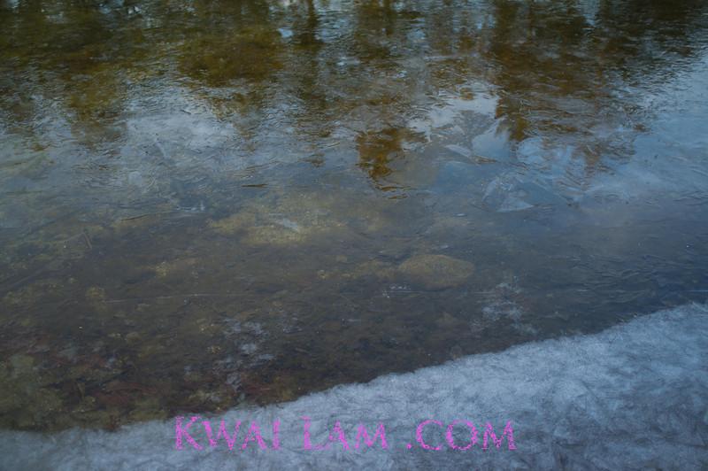 MA-Winter-2011_KwaiLam-6048