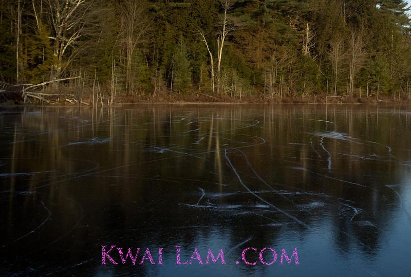 MA-Winter-2011_KwaiLam-6172-2