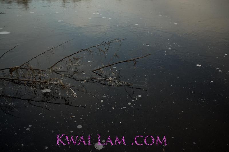 MA-Winter-2011_KwaiLam-6069