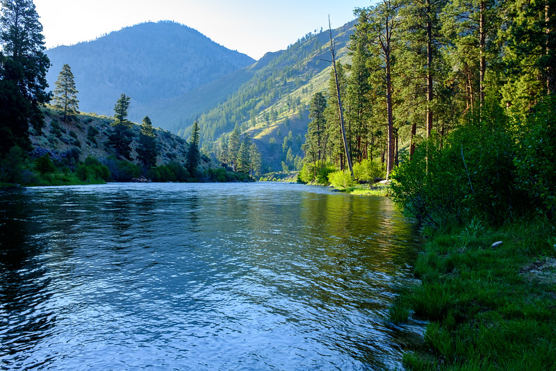 Morning at Lower Jackass Camp, Middle Fork, Salmon River
