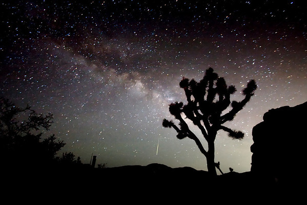 Milkyway, Meteor & Joshua Tree - Joshua Tree National Park. 2009.
