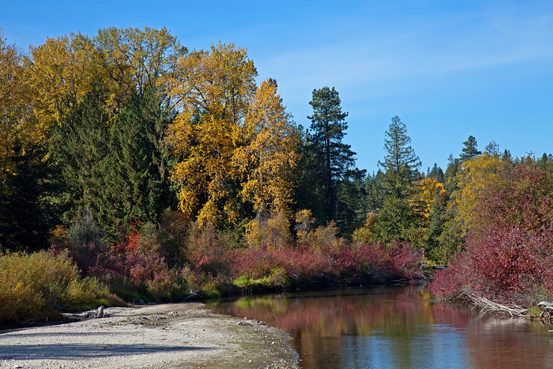 Near the north entrance of Lake Wenatchee State Park.