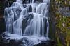 Sunbeam Creek falls, off Stevens Canyon road.