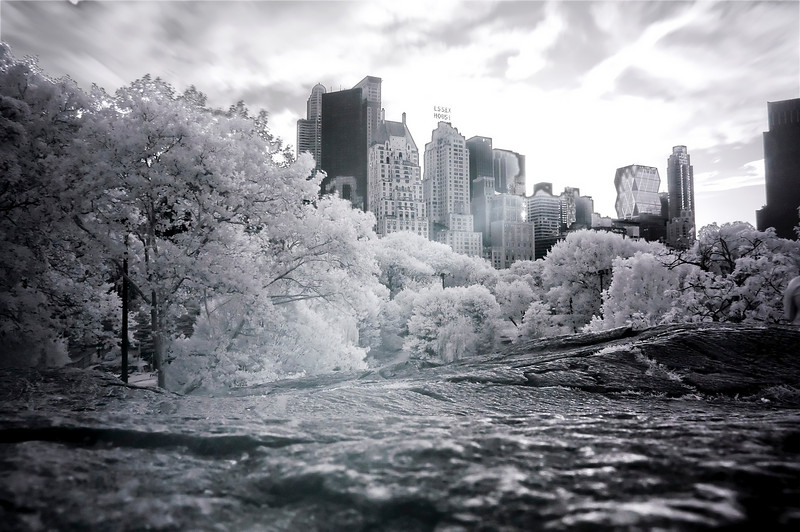 Central Park, New York in Infrared.