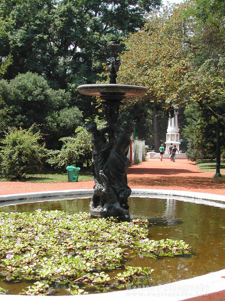 N4553 Pond & Sculpture Botanical Gardens-149